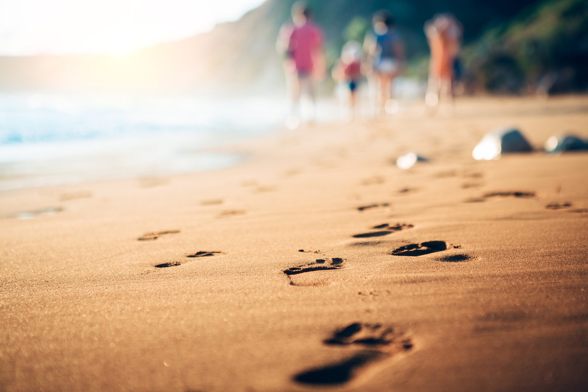 Go On A Beach Scavenger Hunt