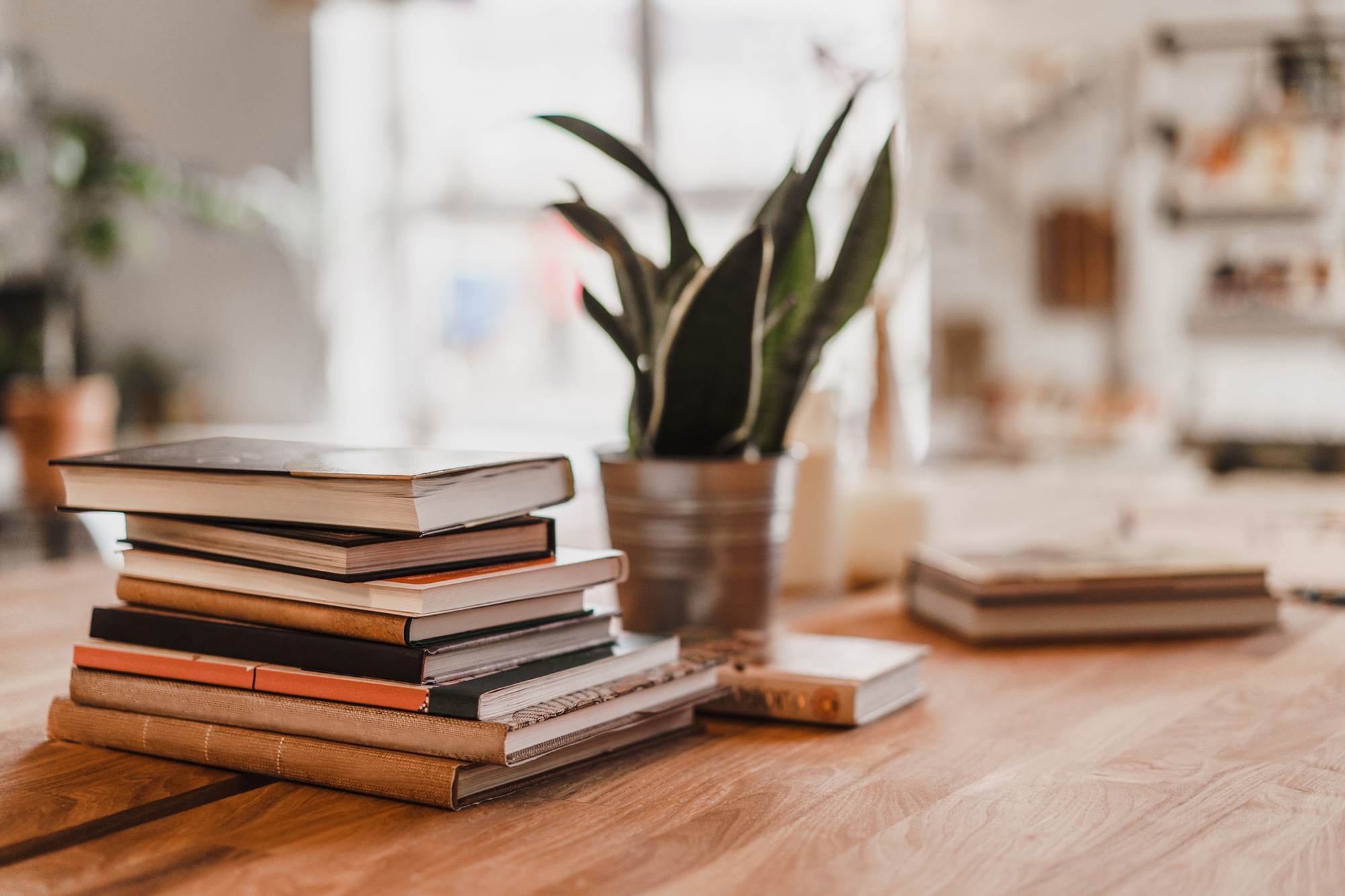 Work Through the Top 100 Must-Read Books